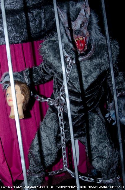 Photoshoot Magazine with The Werewolf Divine Diva Fancy Dress